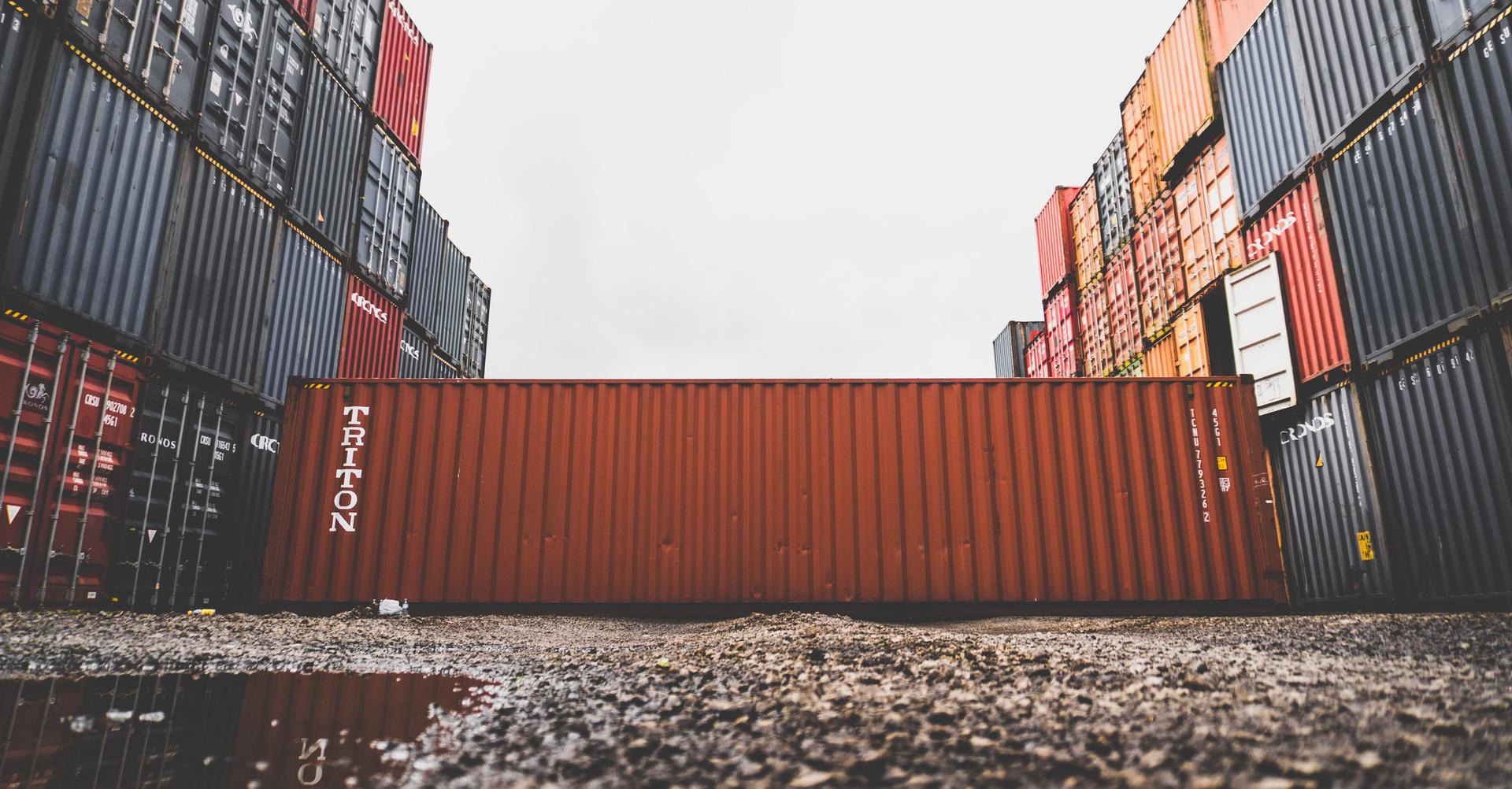 import-export-expert-witness